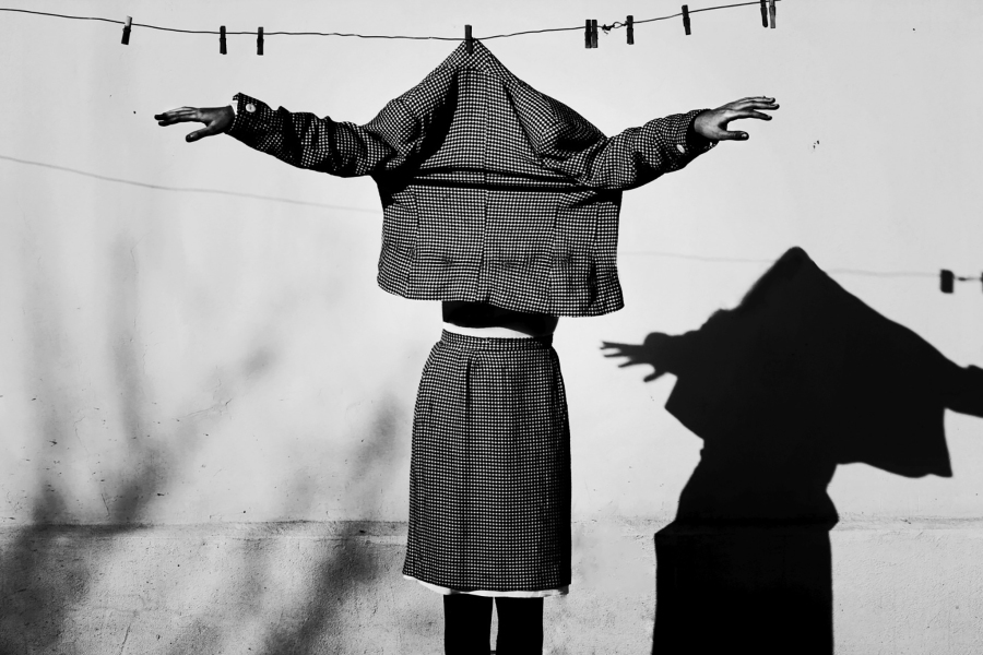 The Doppelganger, by Felicia Simion,
